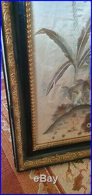 Large Antique silk on silk peacock Embroidery In ebonised and gilt Frame
